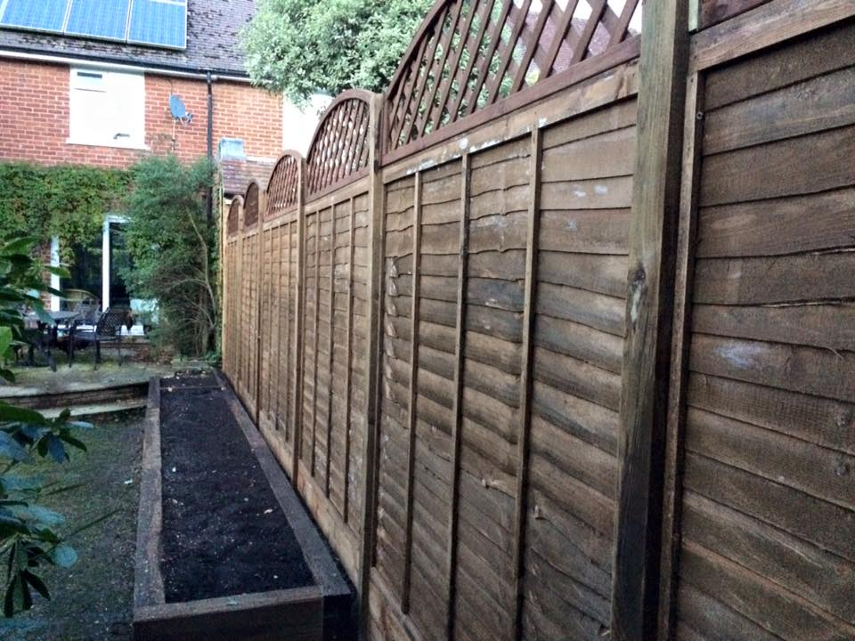 Image Result For Hambledon Tree And Garden Services